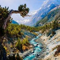 Непал. Трек вокруг Анапурны :: Oleg Blazhyievskyi