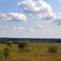 Бывшие поля. :: Наталья Метелькова