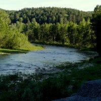 горная река :: Вячеслав Завражнов