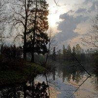 Утро в Шуваловском парке :: Юрий Цыплятников