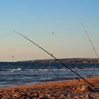Рыбалка :: Natasha Voronina