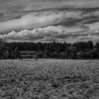 Одинокая лавочка :: Сергей Урюпин