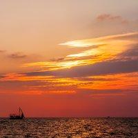 Яркие краски заката... :: Елена Васильева