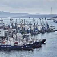 Рыбный порт Владивостока :: Ed Peterson