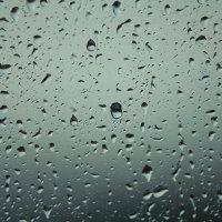 Дождь :: Владимир и Тина Рябоненко