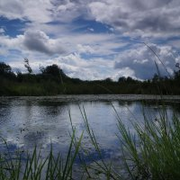 Озеро :: Вячеслав Тихановский