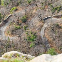 горная дорога :: valeriy g_g
