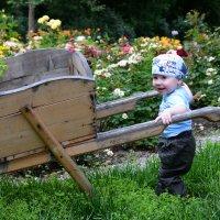 Маленький садовник :: Ирина Абросимова