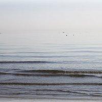 Адриатическое море :: Nika Medvedeva