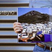 фотокнига :: ZOOMBOOK фотокниги