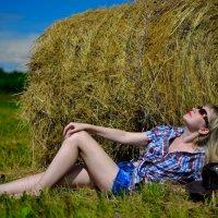Солнце, поле и трава .. :: Александр Репко