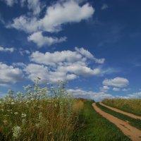 Дорога в облака :: Альберт Беляев