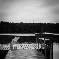 призрак лесного озера :: Наталья Ремини