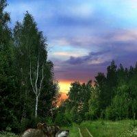 Словно бритва, рассвет полоснул по глазам... :: Сергей Михайлов