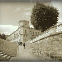 Гатчинский дворец, июль 2013 :: Марк Васильев