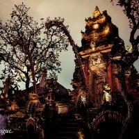 Shadow Temple Dance :: Eva Langue