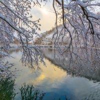Зима :: Olga Lakeeva
