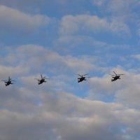 Вертолёты над Дворцовой :: Лариса Лунёва