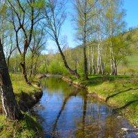 Тихая весна. :: Валерий Медведев