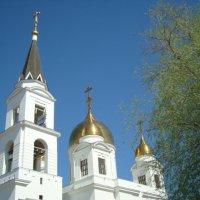 Собор  Кирилла и Мефодия :: марина ковшова