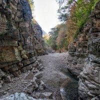 Абхазия , Мерхеульский каньон . :: Александр Криулин