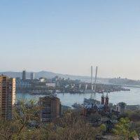 Дневная панорама бухты Золотой Рог :: Дмитрий