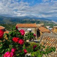 Цветущая Сицилия 1 :: Galina