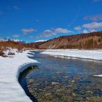 Прозрачные воды весенней реки :: Анатолий Иргл
