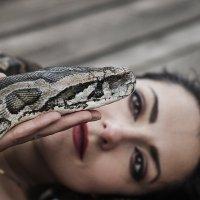 Девушка со змеей :: Елена Логачева