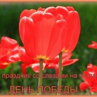 С Праздником 9 Мая, с Днём ПОБЕДЫ :: Татьяна Ломтева