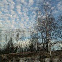 Снег тает. :: Марина Китаева