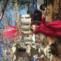 Cherry blossom :: Майя Бастрикова