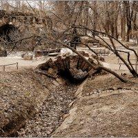 каменный мостик :: Galina Belugina