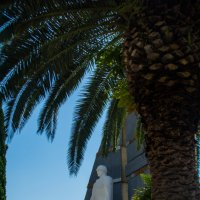 Памятник советским воинам-победителям.. на фоне пальм :: Ruslan