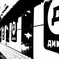 Дикси в Лосино-Петровском :: Алексей Подрезов