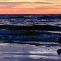 Балтийское море :: Anna