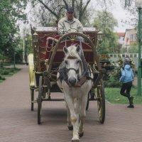 прогулки по Бресту :: Константин Король