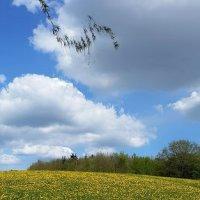 У неба - чёлка, уземли юбчонка :: Валерий Розенталь