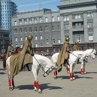 Волнуются перед парадом не только люди :: натальябонд бондаренко
