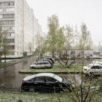 Снег :: Олег Савин