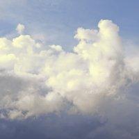 Пасмурная погода :: Ольга Осовская