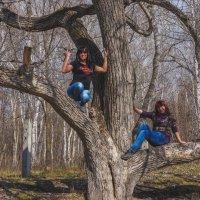 Русалки на ветвях сидят!!! :: Ирина Антоновна
