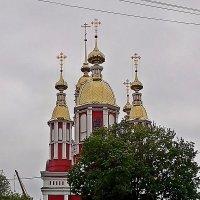 Храмы  Тамбова . :: Виталий Селиванов