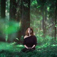 Лесные сказки :: Eugeni Lis