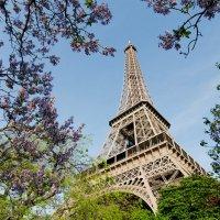 когда-то в Париже :: scbi