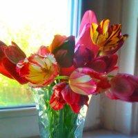 букет тюльпанов :: SoNata_78