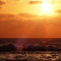 Солнце,море... :: Пётр Беркун