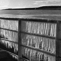 """1972 -й год.Кольский залив.Борт танкера """"Апшеронск"""" :: Иволий Щёголев"""