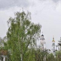 Под весенней вуалью :: Алеся Пушнякова