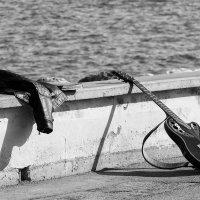 Street musician :: Dmitry Ozersky